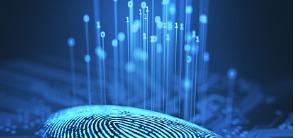 digital-fingerprint-binary-id_295x138